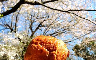 【高田馬場】お花見パンにもちょうどいい『馬場FLAT』サンドイッチ他