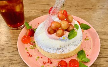 【恵比寿】カフェ アクイーユ「さくらんぼレアチーズパンケーキ」